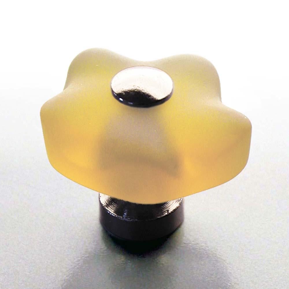 m belknopf blume champagner 36mm chrom online shop direkt vom hersteller. Black Bedroom Furniture Sets. Home Design Ideas